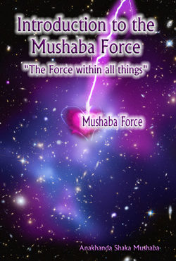 Introduction to the Mushaba Force